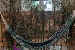 Amazzonia4